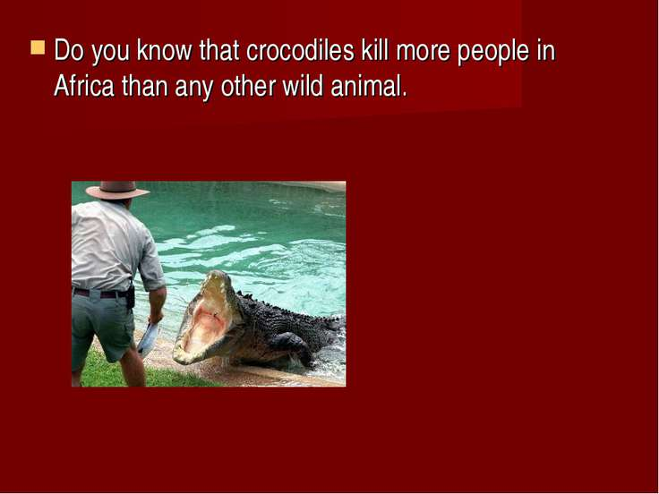 Do you know that crocodiles kill more people in Africa than any other wild an...
