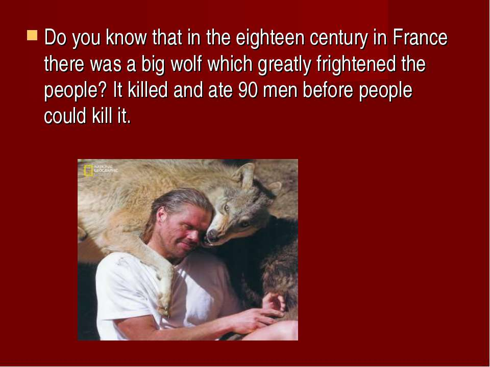 Do you know that in the eighteen century in France there was a big wolf which...