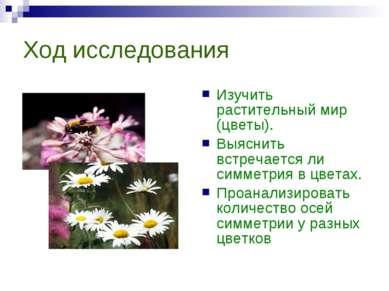 Ход исследования Изучить растительный мир (цветы). Выяснить встречается ли си...