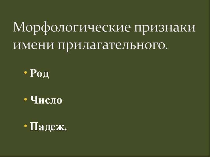 Род Число Падеж.