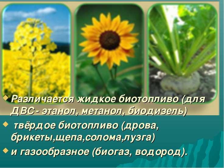 Различается жидкое биотопливо (для ДВС- этанол, метанол, биодизель) твёрдое б...