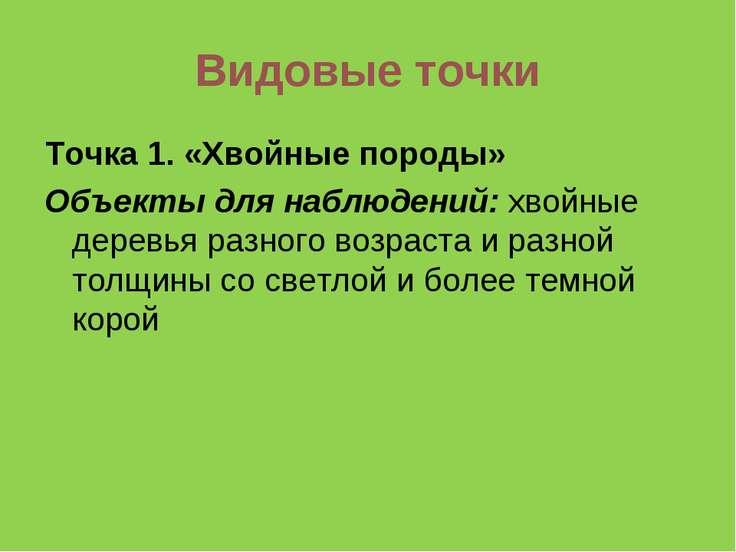 Видовые точки Точка 1. «Хвойные породы» Объекты для наблюдений: хвойные дерев...
