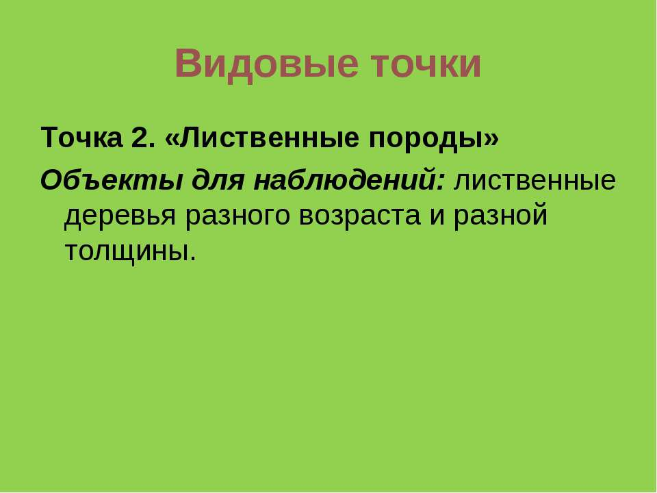 Видовые точки Точка 2. «Лиственные породы» Объекты для наблюдений: лиственные...