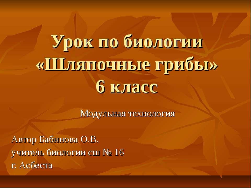 Урок по биологии «Шляпочные грибы» 6 класс Модульная технология Автор Бабинов...