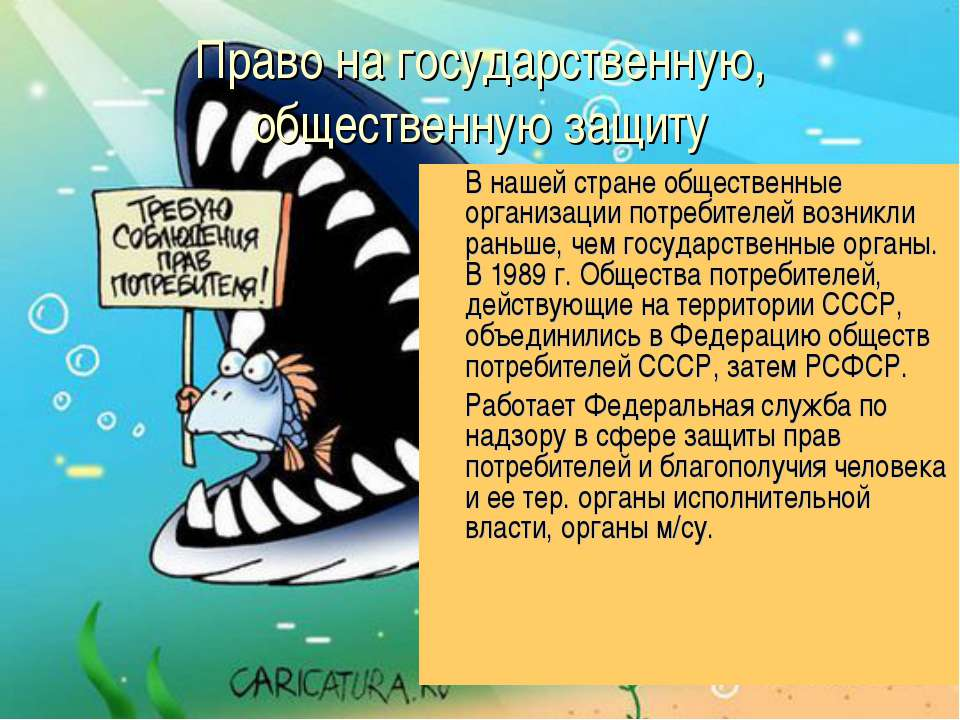 Право на государственную, общественную защиту В нашей стране общественные орг...