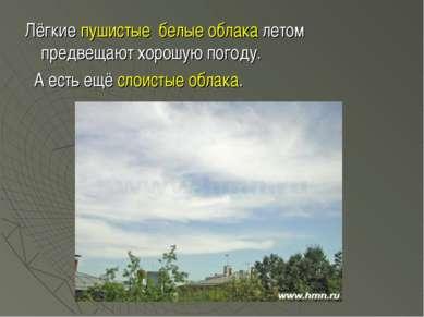 Лёгкие пушистые белые облака летом предвещают хорошую погоду. А есть ещё слои...