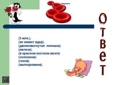 (5 млн.). (не имеют ядер). (двояковогнутая лепешка) (железа). (в красном кост...