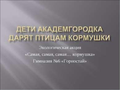 Экологическая акция «Самая, самая, самая… кормушка» Гимназия №6 «Горностай»