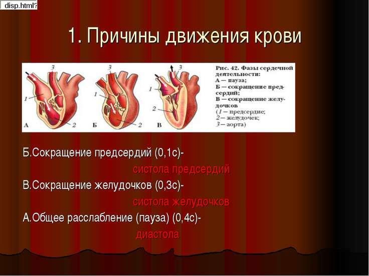 1. Причины движения крови Б.Сокращение предсердий (0,1с)- систола предсердий ...