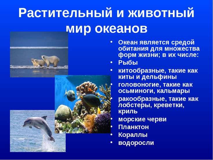 Растительный и животный мир океанов Океан является средой обитания для множес...