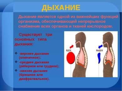 ДЫХАНИЕ Существует три основных типа дыхания: -верхнее дыхание (ключичное); -...
