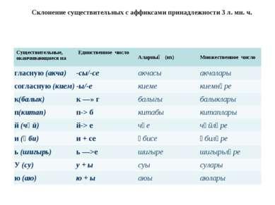 Склонение существительных с аффиксами принадлежности 3 л. мн. ч. Существитель...