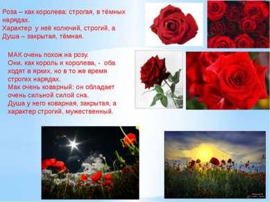 Роза – как королева: строгая, в тёмных нарядах. Характер у неё колючий, строг...