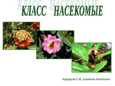 Кукуруза С.В. учитель биологии