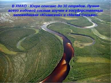 В ХМАО - Югре описано до 30 отрядов. Лучше всего видовой состав изучен в госу...