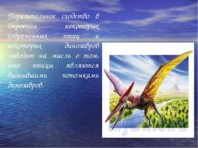 Поразительное сходство в строении некоторых современных птиц и некоторых дино...