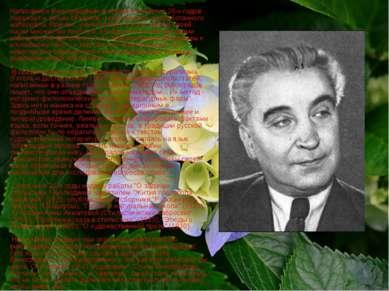 Написанное Виноградовым в первое пятилетие 20-х годов поражает и своим объемо...