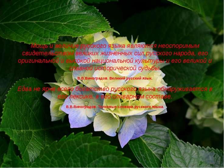 Мощь и величие русского языка являются неоспоримым свидетельством великих жиз...