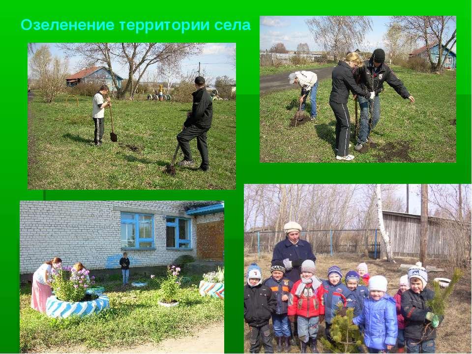 Озеленение территории села
