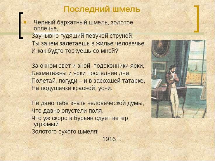 Черный бархатный шмель, золотое оплечье, Заунывно гудящий певучей струной, Ты...