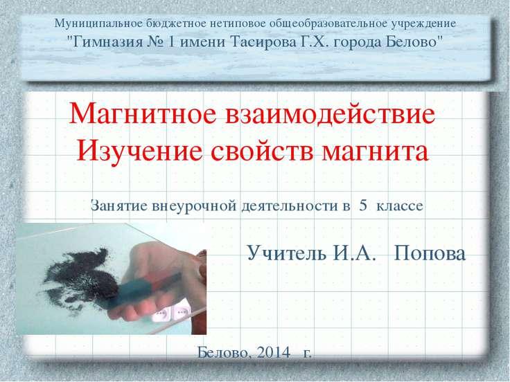 Магнитное взаимодействие Изучение свойств магнита Учитель И.А. Попова Муницип...
