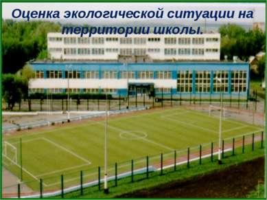 Оценка экологической ситуации на территории школы.
