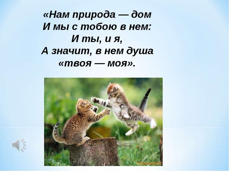 «Нам природа — дом И мы с тобою в нем: И ты, и я, А значит, в нем душа «твоя ...
