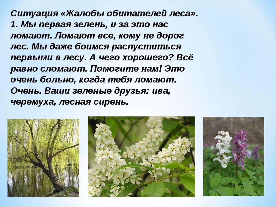 Ситуация «Жалобы обитателей леса». 1. Мы первая зелень, и за это нас ломают. ...