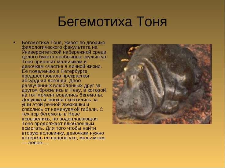 Бегемотиха Тоня Бегемотиха Тоня, живет во дворике филологического факультета ...