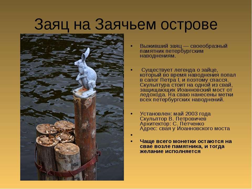 Заяц на Заячьем острове Выживший заяц — своеобразный памятник петербургским н...