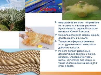 Сизаль натуральное волокно, получаемое из листьев из листьев растения Agava s...