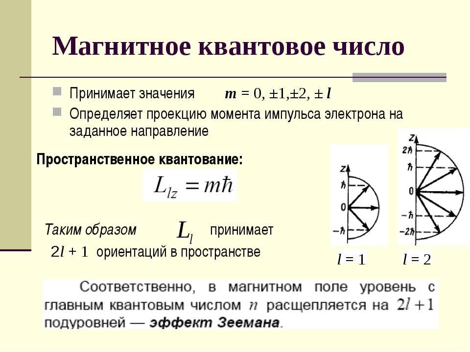 Магнитное квантовое число Принимает значения m = 0, ±1,±2, ± l Определяет про...