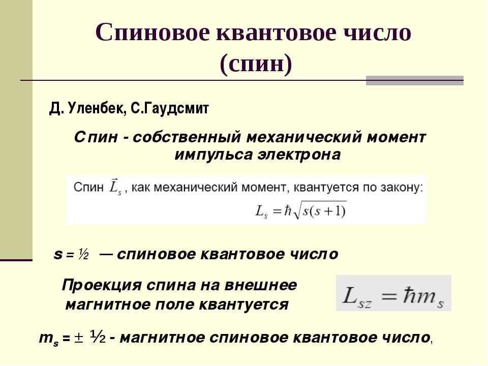 Спиновое квантовое число (спин) Спин - собственный механический момент импуль...