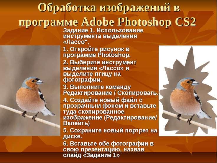 Обработка изображений в программе Adobe Photoshop CS2 Задание 1. Использовани...