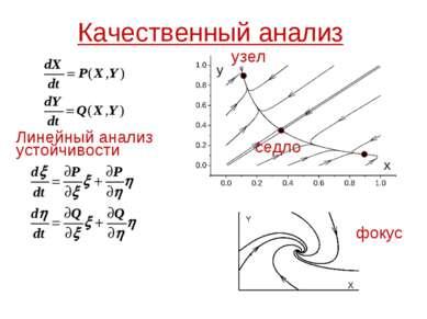 Качественный анализ Линейный анализ устойчивости узел фокус седло