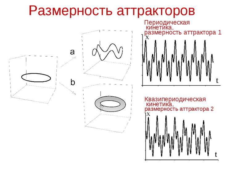 Размерность аттракторов Квазипериодическая кинетика, размерность аттрактора 2...