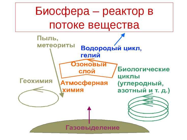 Биосфера – реактор в потоке вещества
