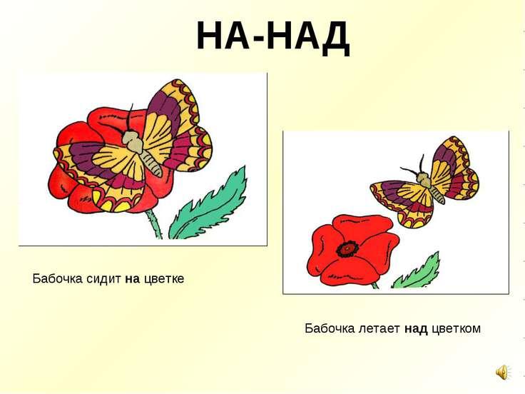 НА-НАД Бабочка сидит на цветке Бабочка летает над цветком