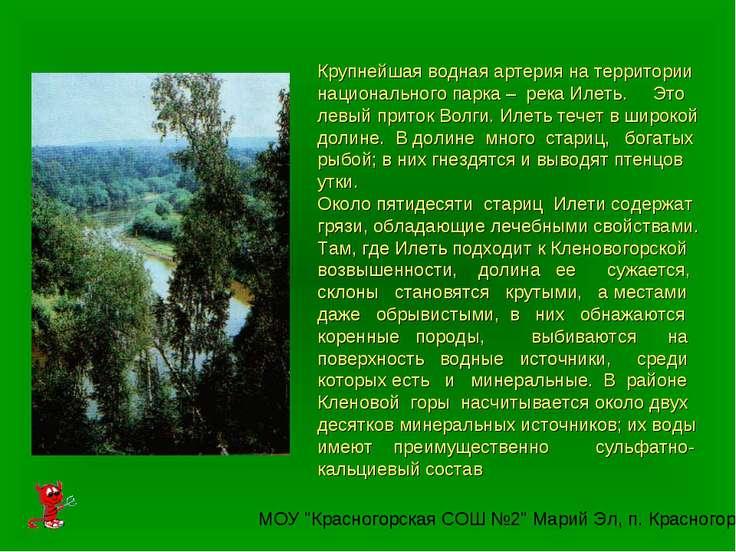 Крупнейшая водная артерия на территории национального парка – река Илеть. Это...