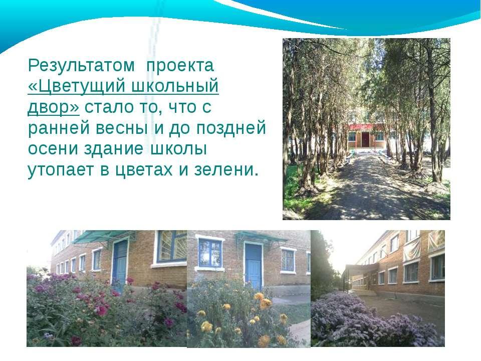 Результатом проекта «Цветущий школьный двор» стало то, что с ранней весны и д...