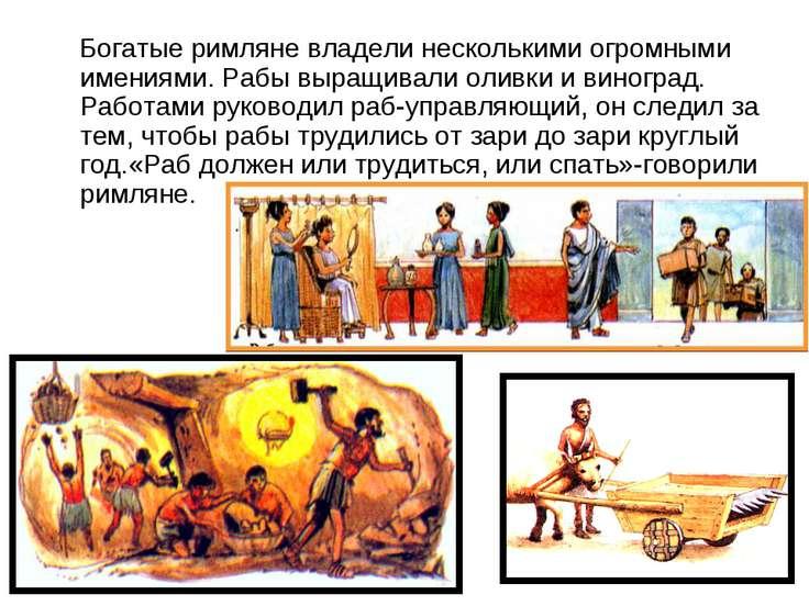Богатые римляне владели несколькими огромными имениями. Рабы выращивали оливк...