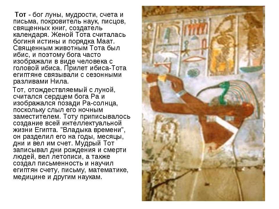 Тот - бог луны, мудрости, счета и письма, покровитель наук, писцов, священных...