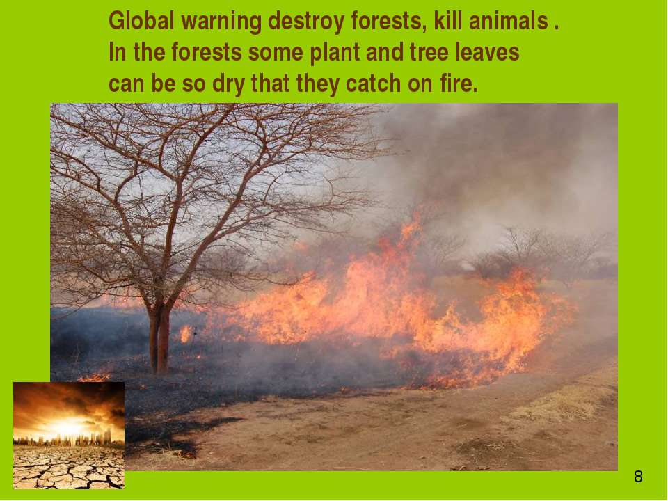 Global warning destroy forests, kill animals . In the forests some plant and ...