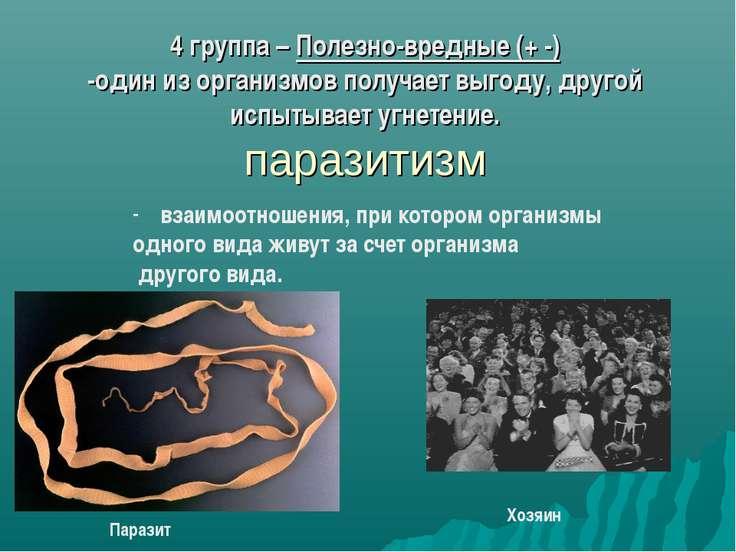 4 группа – Полезно-вредные (+ -) -один из организмов получает выгоду, другой ...