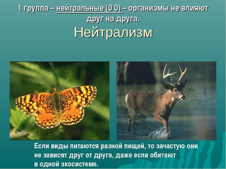 1 группа – нейтральные (0 0) – организмы не влияют друг на друга. Нейтрализм ...