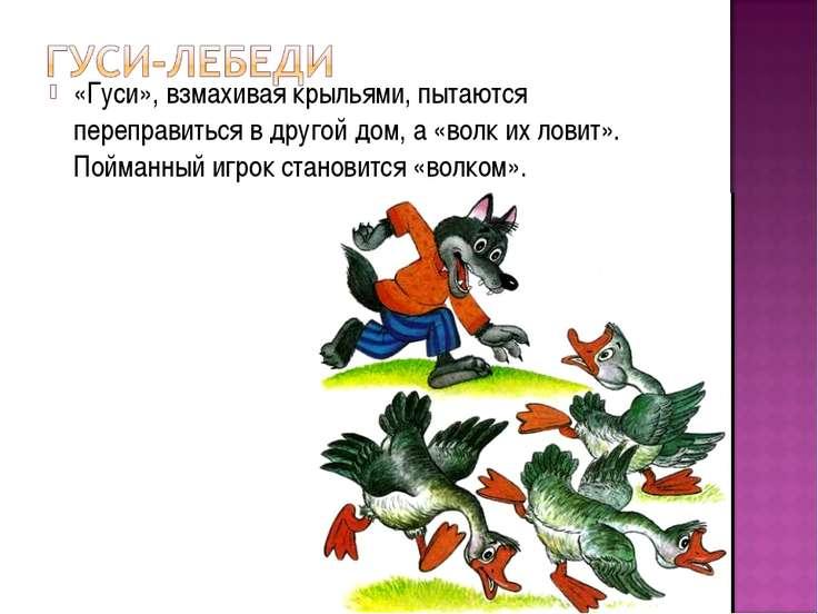 «Гуси», взмахивая крыльями, пытаются переправиться в другой дом, а «волк их л...