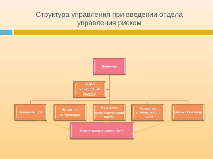 Структура управления при введении отдела управления риском