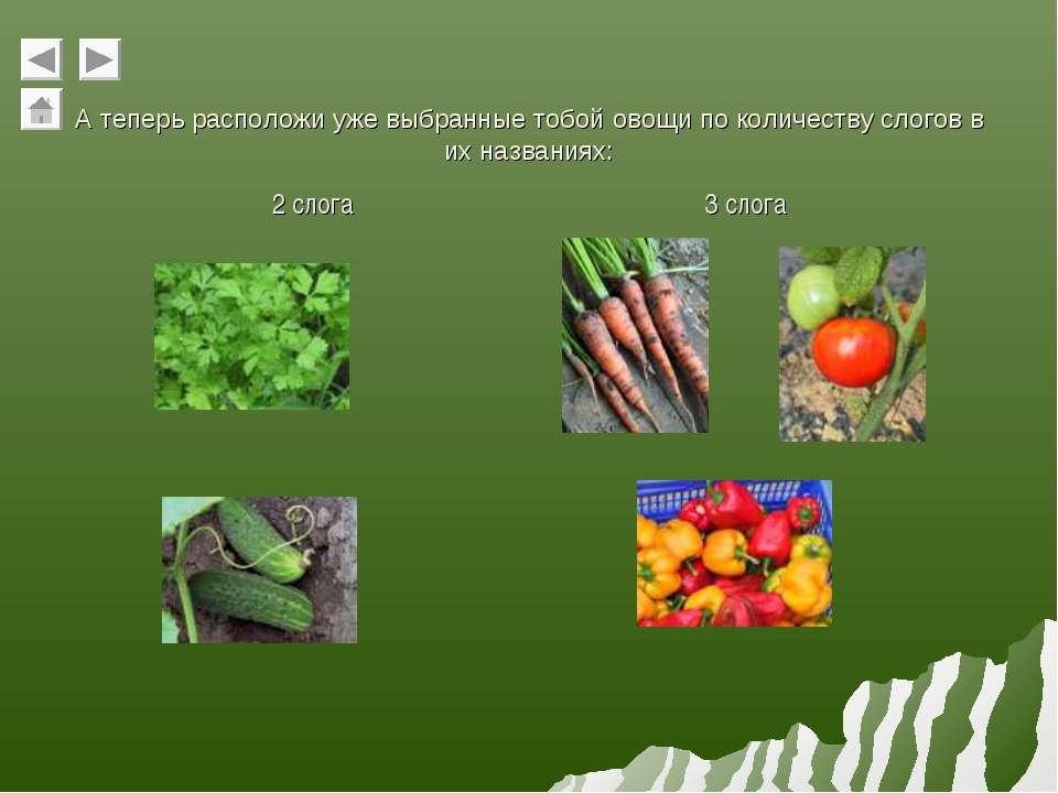 А теперь расположи уже выбранные тобой овощи по количеству слогов в их назван...