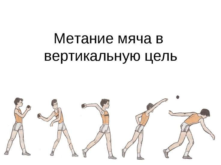 Метание мяча в вертикальную цель