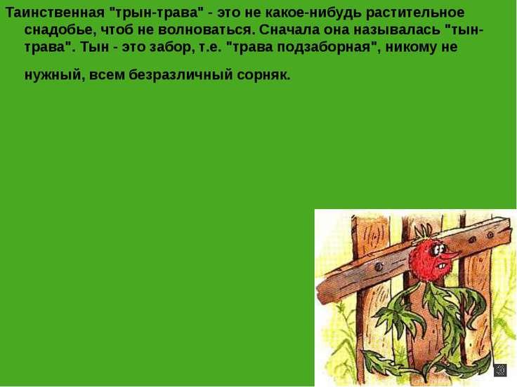 """Таинственная """"трын-трава"""" - это не какое-нибудь растительное снадобье, чтоб н..."""